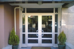 alüminyum+lamine cam Bina Kapısı